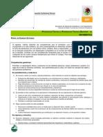 02 Perfil de Egreso de PT y PTB en Informatica