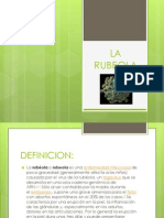Diapositivala Rubeola Luce