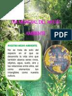 folleto DÍA DEL MEDIO AMBIENTE