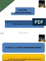 Cultura Organizacional_Fábio Pereira