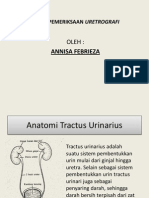 URETROGRAFI ANNISA radiologi