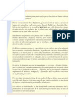 cultico de macadamia.pdf