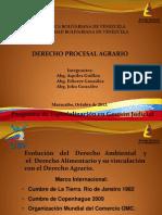 EXPOSICION PROCESAL AGRARIO 2013