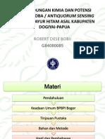 Laporan Praktik Lapangan 2012 ROBERT DESE BOBII