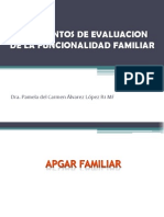 Instrumentos de Evaluacion de La Funcionalidad Familiar