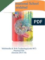 Practical Multimedia 2013-2014