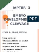 Chapter 3 Embyo Development – Cleavage