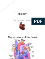 Biology IGCSE Human circulatory system