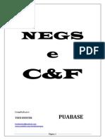 NEGS e C&F