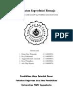 kesehatanreproduksiremajarevisi-120507121239-phpapp02