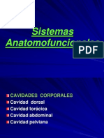 Anatomía General tejidos