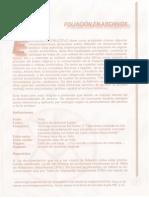 Instructivo de Foliacion de Documentos