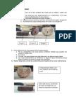 Informe Rocas Sedimentarias
