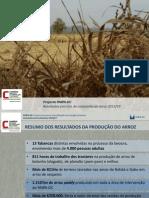 Apresentação dos resultados da lavoura do arroz 2013/14 do PAIPA-DC