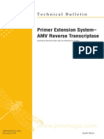 Primer Extension System- AMV Reverse Transcriptase Protocol