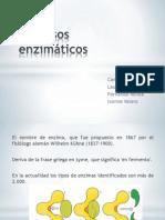 Procesos enzimáticos