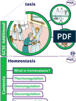 6. Homeostasis v1.0
