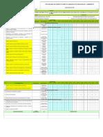 Copia de FOGS014- Programa de Inspecciones Planeadas de S&SO y Ambiente