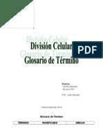 Divicion Celular Terminps