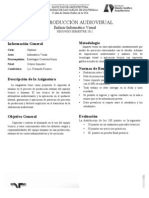 Programa Produccion Audiovisal 2012