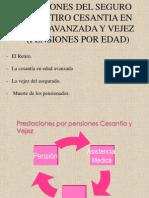 pensionimss1973casopractico-121028230950-phpapp01
