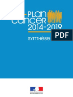 Synthese Plan Cancer2014