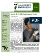 SAVA Newsletter 3 2014