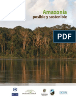 Amazonia Posible y Sostenible