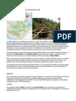 Areas Con Mayor Deforestacion en El Pais