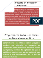 Presentacion2 Tipos Proyectos Ea