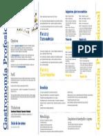 GP Info2013enpdfparaweb