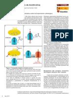 Receptor Efector Nicotinico de Acetilcolina