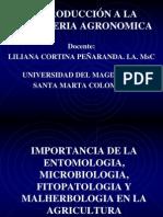 4. Entomologia, Microbiologia, Fitopatologia y Malherbologia