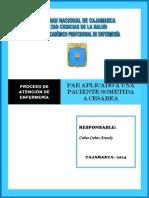 Pae Pielonefirits