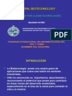 Biotecnologia de Los Minerales