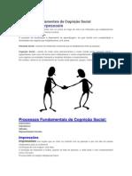 Processos Fundamentais da Cognição Social