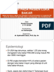 208316739-Luka-Bakar