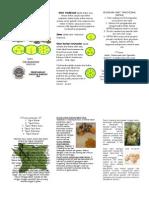 Leaflet Obat Tradisional Edit