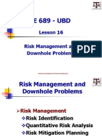 Lesson 16 Risk Management and Problems