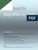 2ביולוגיה של התא (2)