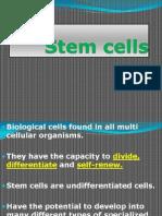 13. Stem Cells (2)