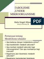 METABOLISME SEKUNDER MIKROORGANISME