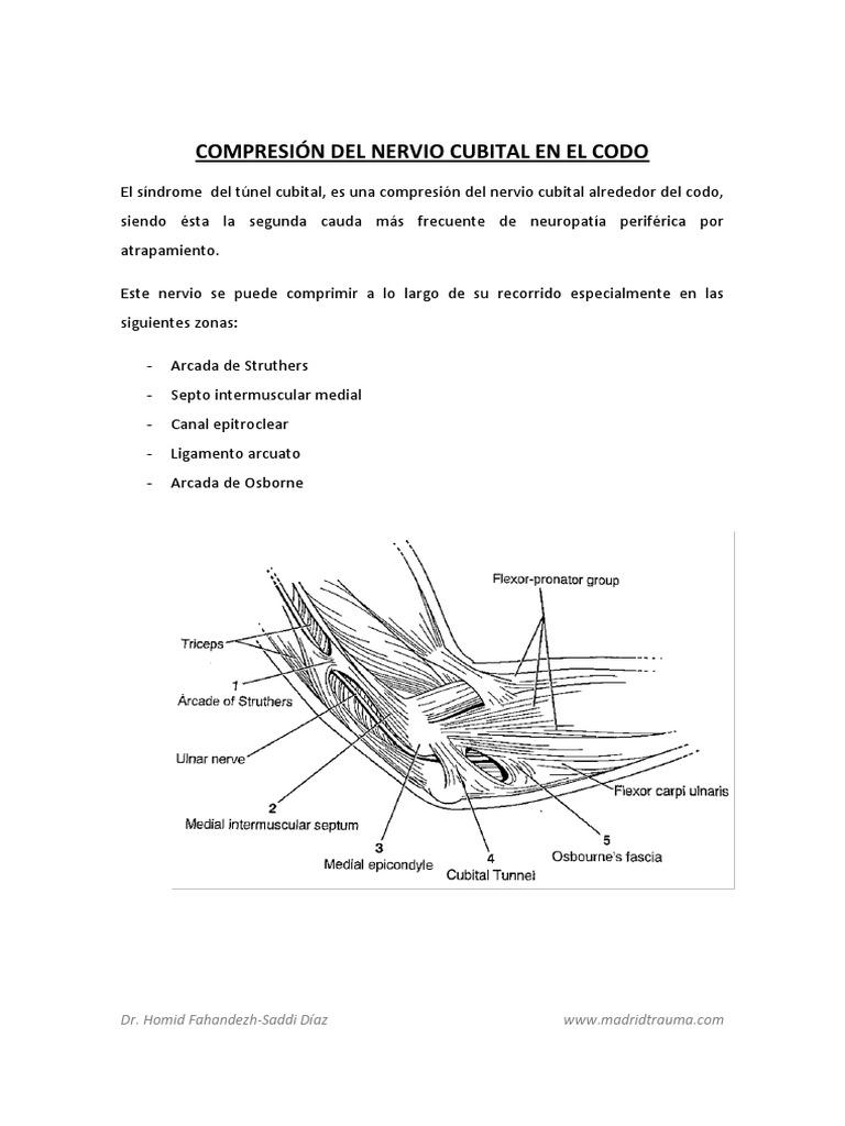 Compresion Del Nervio Cubital en El Codo