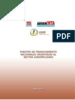 2013 - Fuentes de Financiamiento