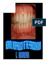 2.Normal Morphology of Periodontium i 2013