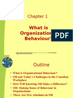 3240 What is Organizationa Behaviour