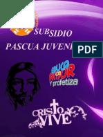 Subsidio Pascua Juvenil 2014 -Arquidiocesis de Durango