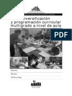 080221-Guia Diversificacion y Programacion Multigrado