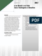 A fruticultura no Brasil e no Vale do São Francisco - Vantagens e Desafios
