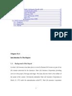 Report Internshipe State Life Rizwan